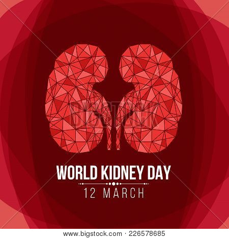 World Kidney Day With Abstract Triangle Kidney Sign On Red Background Vector Design