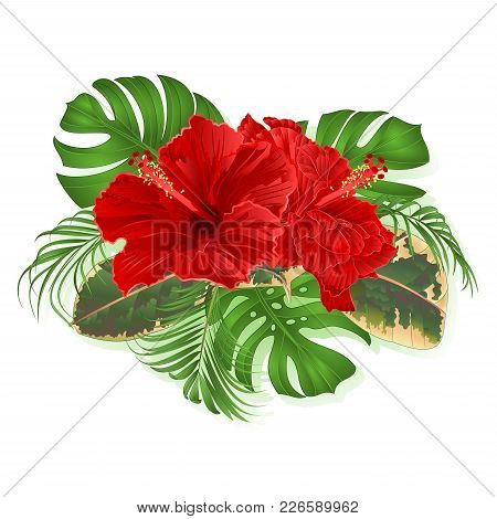 Bouquet With Tropical Flowers Hawaiian Style Floral Arrangement, With Beautiful Hibiscus, Palm,philo