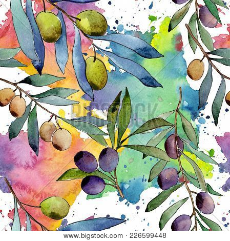 Olive Tree Pattern In A Watercolor Style. Full Name Of The Plant: Branches Of An Olive Tree. Aquarel