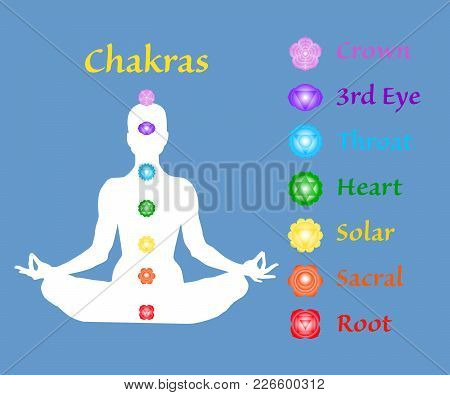 Famale Body In Lotus Yoga Asana With Seven Chakras On Blue Background. Root, Sacral, Solar, Heart, T