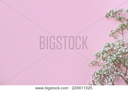 Styled Stock Photo. Feminine Wedding, Birthday Desktop Mockup With Baby's Breath Gypsophila Flowers.