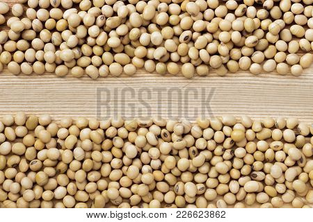 A Pile Of Soybeans, Divided Into Two Rows On The Wood Table. Soybean Is A Leguminous Plant Native To