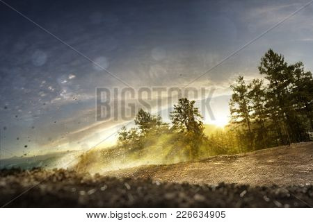 Background Forest Track Dirt Bike With Hills