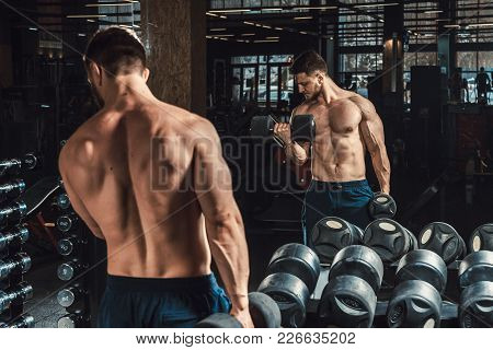 Good Looking Young Man Lifting Dumbbells And Working On His Biceps In Front Of The Mirror Looking On
