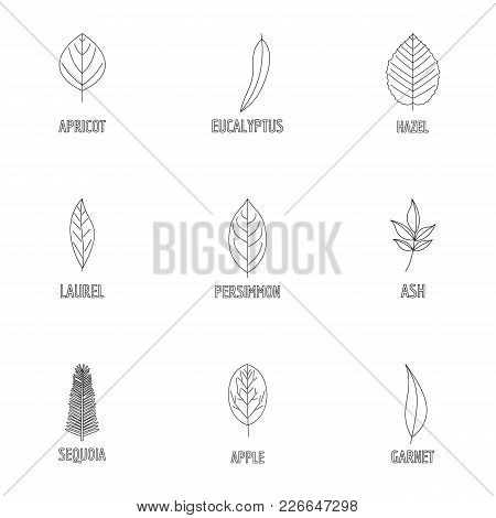 Wood Structure Icons Set. Outline Set Of 9 Wood Structure Vector Icons For Web Isolated On White Bac