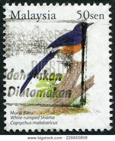 Malaysia - Circa 2005: Postage Stamps Printed In Malaysia, Depicts A Bird White-rumped Shama (copsyc