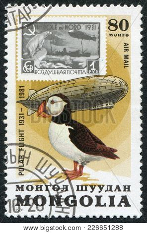 Mongolia-circa 1981: A Stamp Printed In The Mongolia, Dedicated To The 50 Th Anniversary Of The Pola