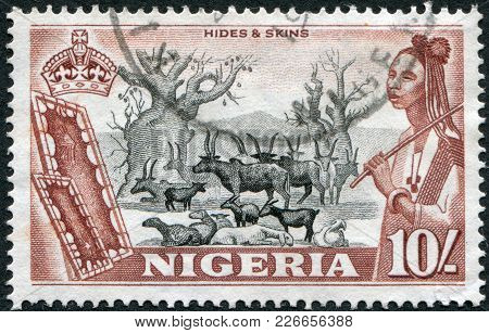 Nigeria - Circa 1953: Postage Stamps Printed In Nigeria, Shows The Baobab And The Herd, Circa 1953