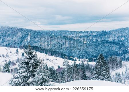 Beautiful Winter Landscape In A Forest. Cold Weather, Black Forest, Germany.