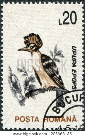 Romania - Circa 1993: A Stamp Printed In The Romania, Shows The Hoopoe (upupa Epops), Circa 1993