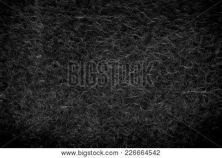 Illustration Of Abstract Prickly Texture With Needles Of Silvery Color On A Black Background