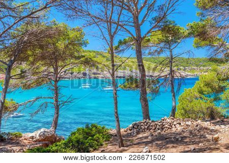 Menorca Sea Shore Front Scenery on Sunny Summer Day from Green Pine Forest in Playa Des Bot Area, Spain.