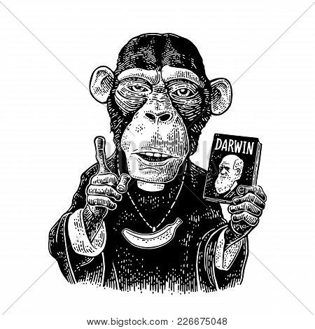 Monkey Dressed In A Cassock And Banana Chain. Priest Holding Book Darwin The Theory Of Evolution And