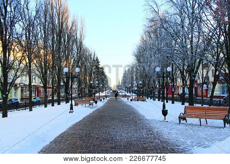 Chernihiv / Ukraine. 24 January 2018: Winter Cityscape. Beautiful Winter Park With Trees Benches And