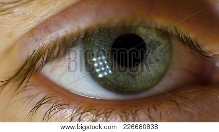 Extreme Macro Of A Brown Eye. Video. Closeup Of Man's Eye. Spot In The Eye. Macro. High Dynamic Rang