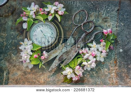 Two Antique Black Scissors Hand Forging Lie Next To Each Other, On The Left Round Old Wall Clock In