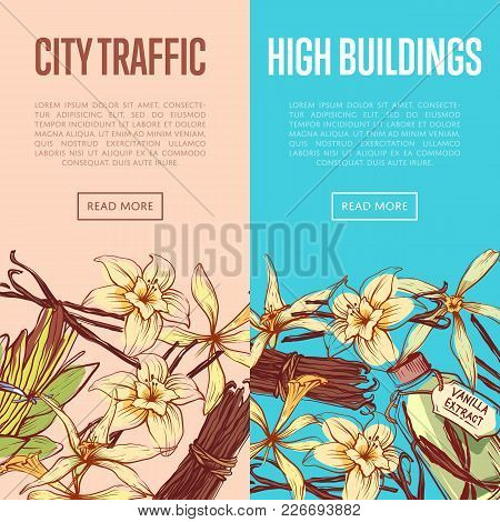 Vanilla Spice Advertising Flyers Set. Exotic Spice Component For Dessert Or Parfum Industry Vector I