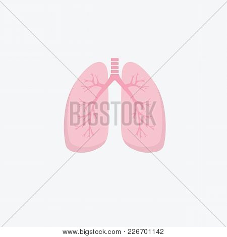 Flat Design Human Lungs Icon. Human Internal Organ. Anatomy Concept. Respiratory System