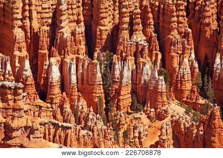 Detail of the Hoodoo rock spires of Bryce Canyon, Utah, USA.