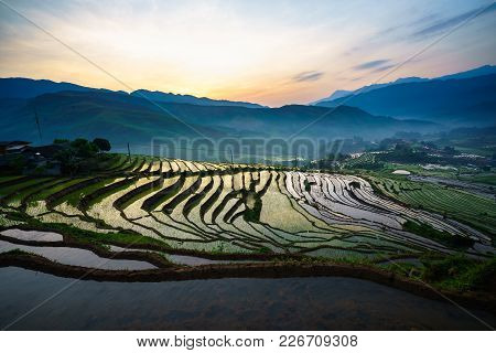 Terraced Rice Field In Morning In Water Season, The Time Before Starting Grow Rice In Y Ty, Lao Cai