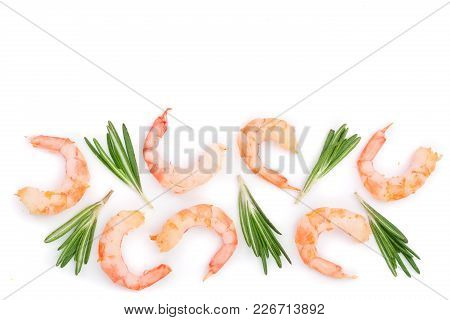 Red Cooked Prawn Or Shrimp With Rosemary Isolated On White Background With Copy Space For Your Text.