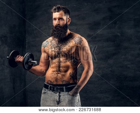 Shirtless Bearded Male With Tattooed Torso Doing Workout On A Biceps With Dumbbell.