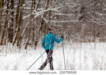 Picture From Back Of Athlete Skier In Forest At Winter Afternoon