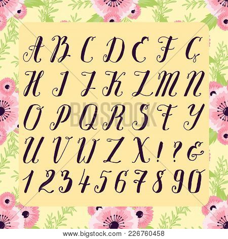 Calligraphic Vector Font With Floral Nature Numbers Ampersand And Symbols Flower Hand Drawn Alphabet