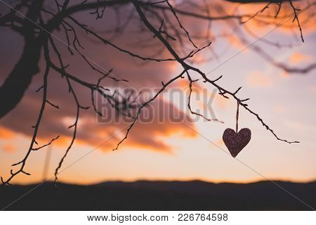 Colorful Small Lovely Heart In Evening Nature