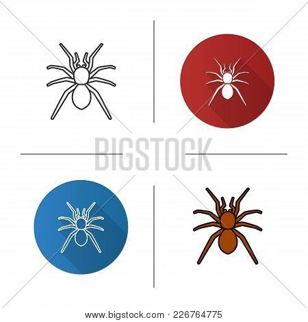 Spider Icon. Flat Design, Linear And Color Styles. Arachnida. Isolated Vector Illustrations