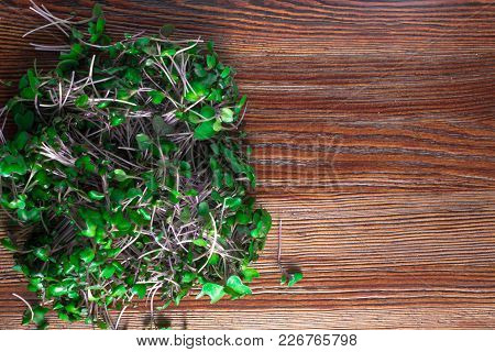 Bio Micro Salad From Red Cabbage Sprots On Wood Background