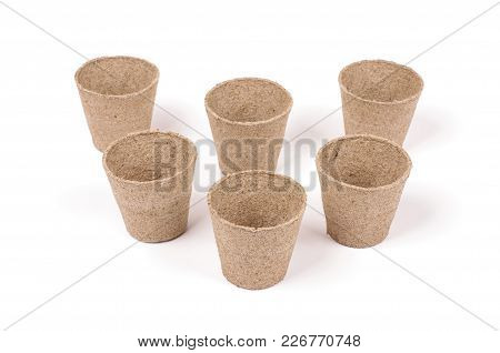 Peat Pots For Seeding Isolated On The White Background