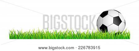 Banner With Soccer Ball And Grass Lawn. Soccer Ball On A Green Grass Lawn.