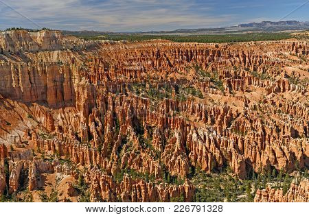 Canyon Of Hoodoos At Bryce Point In Bryce Canyon National Park In Utah