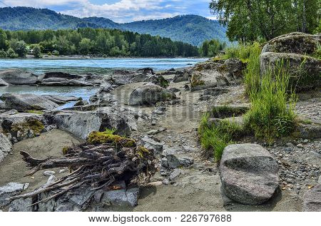 Summer Landscape On The Rocky Bank Of Rapid Siberian River Katun, Boulders From Limestone With Moss