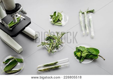 Safety Food. Laboratory For Food Analysis. Herbs, Greens Under Microscope On Grey Background Top Vie