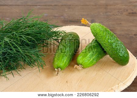 Cucumbers And Bunch Of Fresh Organic Dill On A Rustic Wooden Background.