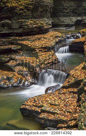 Cascading Through Autumn