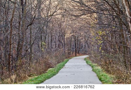 A Paved Trail Leads Through The Woods Into The Distance.