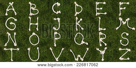Rope Latin Alphabet On Grass. Letters From A To Z