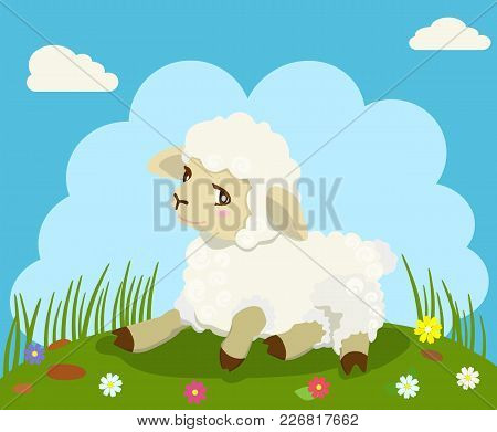 Vector Color Image Of Cute, White Lamb Lying On The Field.