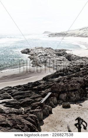 In  Australia  The  Beach  Island The Tree And Rocks