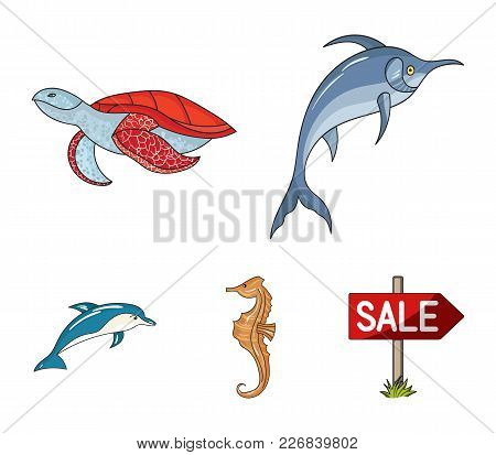 Merlin, Turtle And Other Species.sea Animals Set Collection Icons In Cartoon Style Vector Symbol Sto