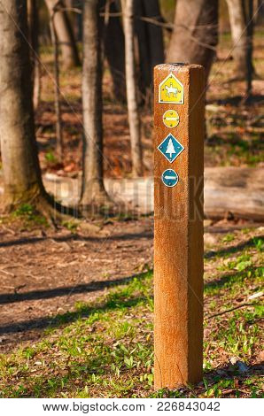 A Trail Marker In The Woods Indicates Multiple Options For Hikers And Equestrians