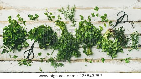 Flat-lay Of Bunches Of Various Fresh Green Kitchen Herbs. Parsley, Mint, Dill, Cilantro, Rosemary, T