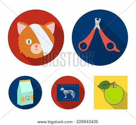 Scissors, Cat, Bandage, Wounded .vet Clinic Set Collection Icons In Flat Style Vector Symbol Stock I