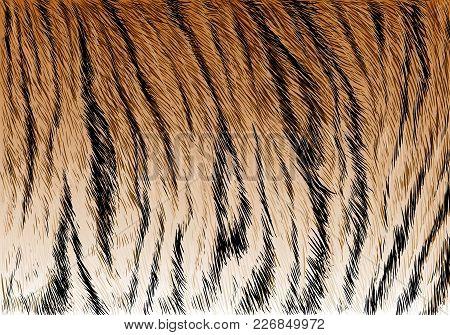 Tiger Fur Stripe Pattern Background Texture Vector Illustration.