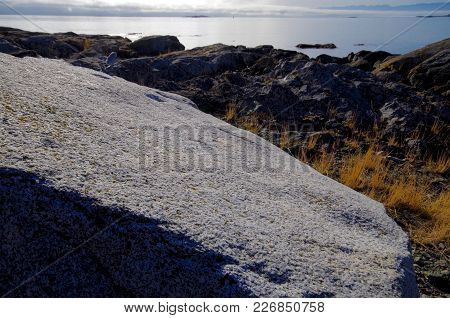 Wide Angle Close Up Of Granite Boulder On Cattle Point, Juan De Fuca Strait In The Distance
