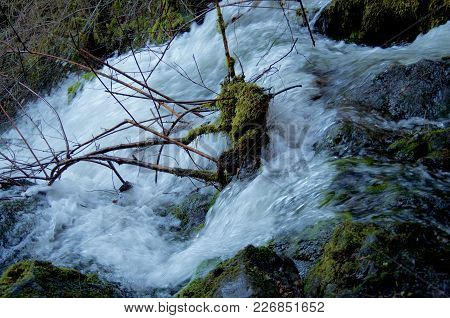 Waterfall Of A Swollen Stream Passing Over Moss Covered Rocks And Bushes, Gowlland Tod Provincial Pa