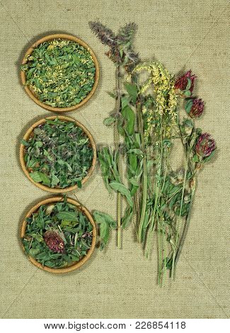 Sage, Salvia, Melilot, Clover. Dry Herbs For Use In Alternative Medicine, Phytotherapy, Spa, Herbal